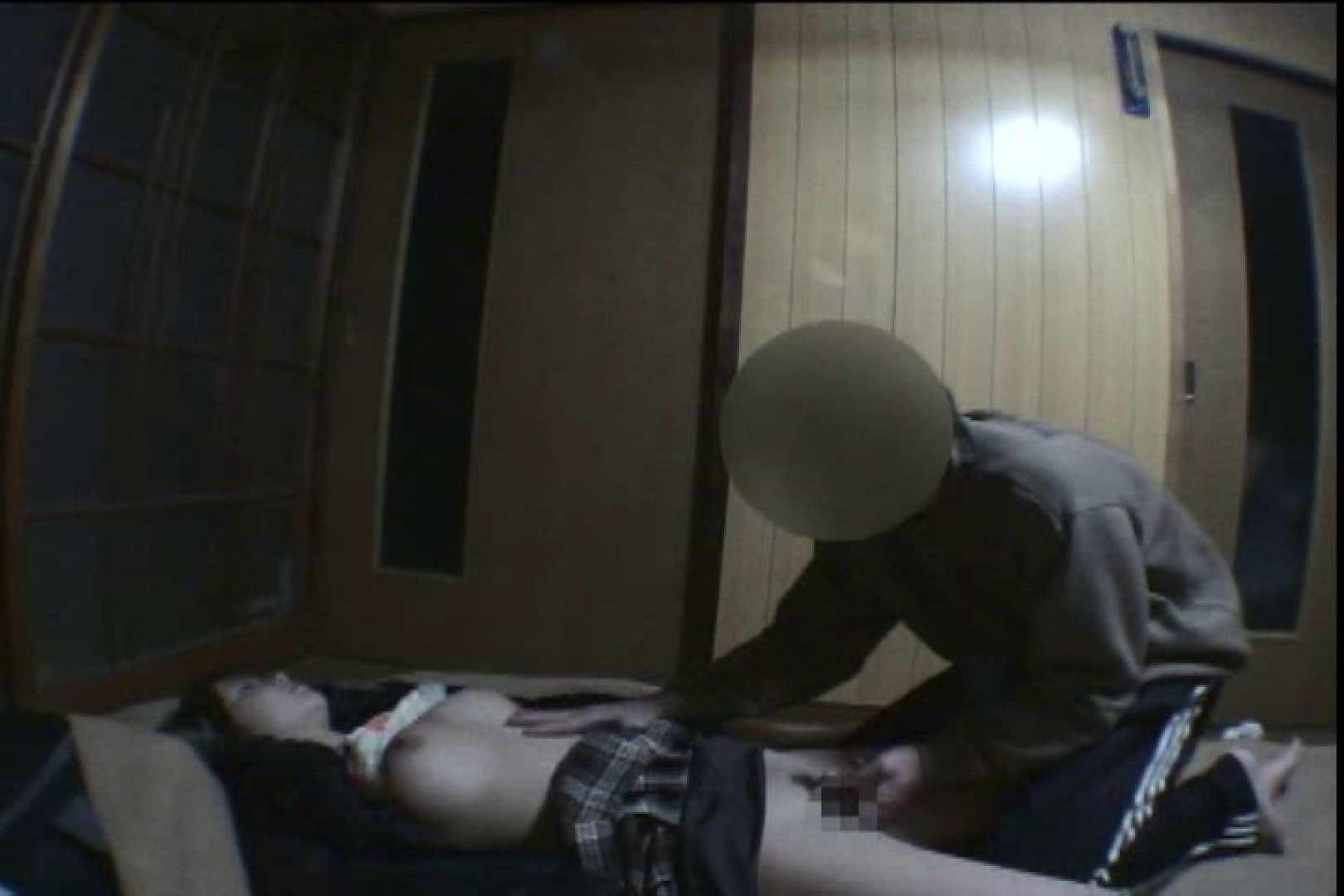 Sex in the dream!眠れる泥酔女3 巨乳編  100PIX 70