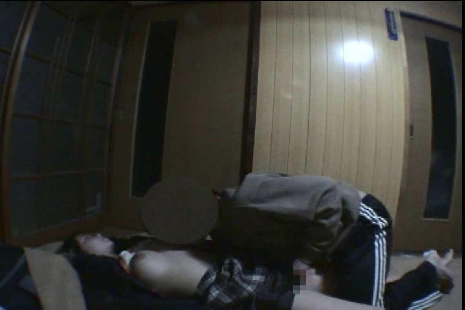 Sex in the dream!眠れる泥酔女3 巨乳編 | SEXで興奮  100PIX 73