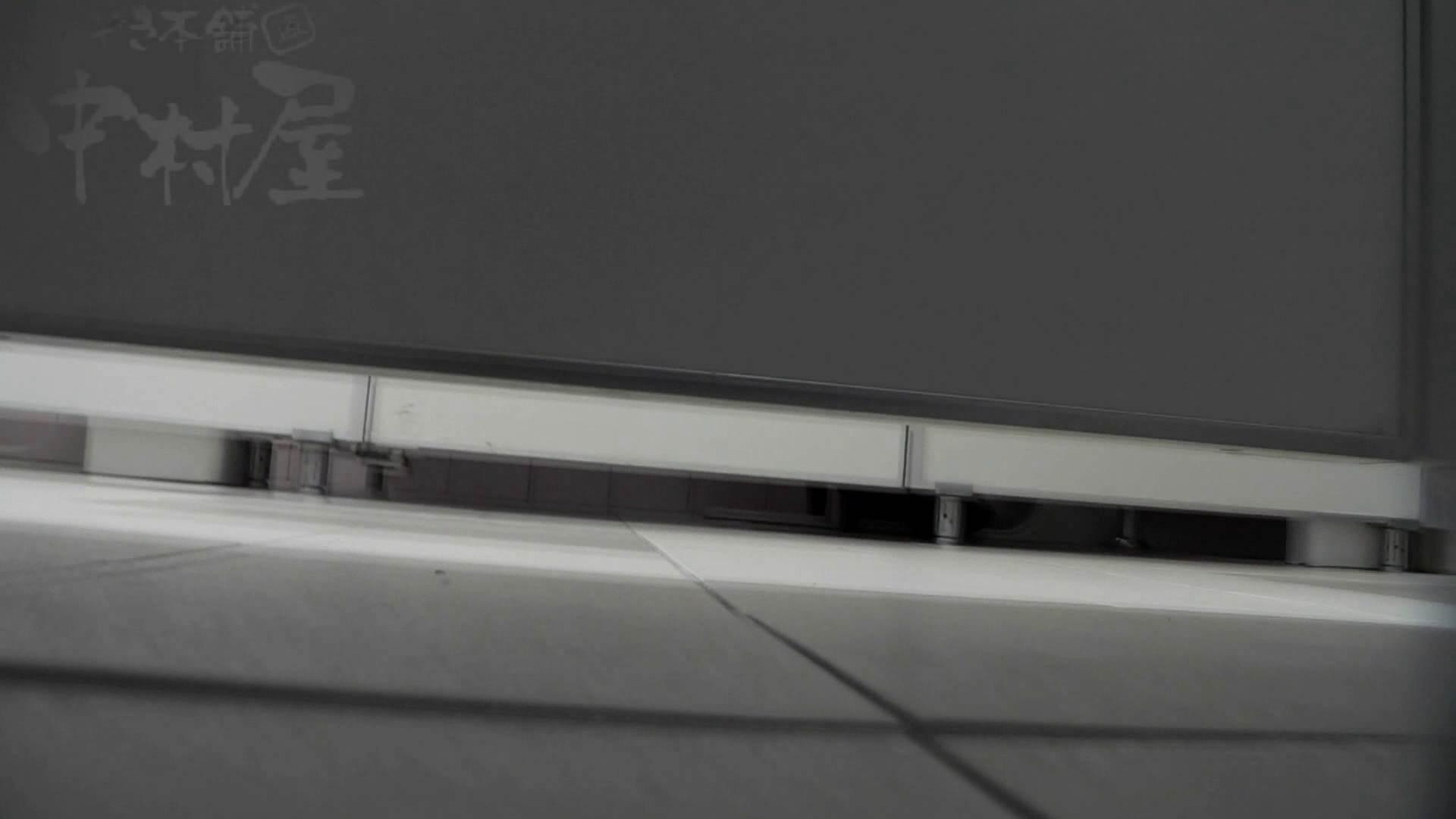 美しい日本の未来 No.06 更に侵入フロント究極な画質 乙女のエロ動画 のぞき動画キャプチャ 75PIX 49