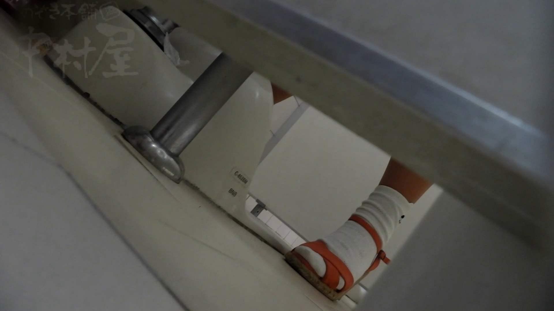 美しい日本の未来 No.13 進歩2 更に鮮明に、からの天然パイパン撮れました。 排泄編 われめAV動画紹介 94PIX 16
