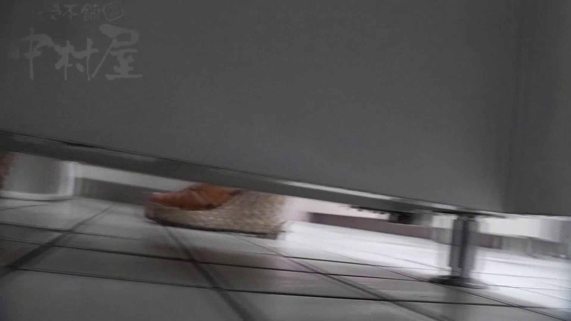 美しい日本の未来 No.21 鼻血注意!! 女子トイレ編 盗撮画像 101PIX 69