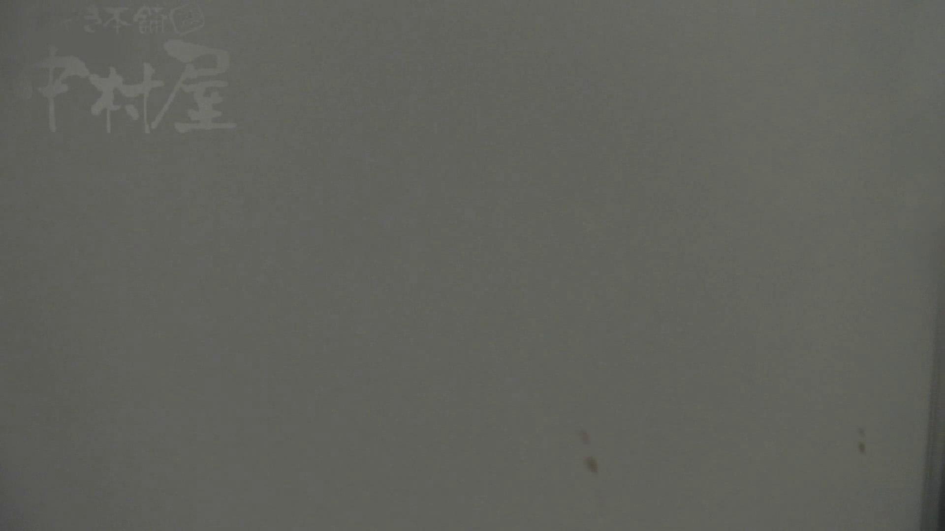 美しい日本の未来 No.25 「22」に登場した子がまさかの大で再登場!! 女子トイレ編  102PIX 88