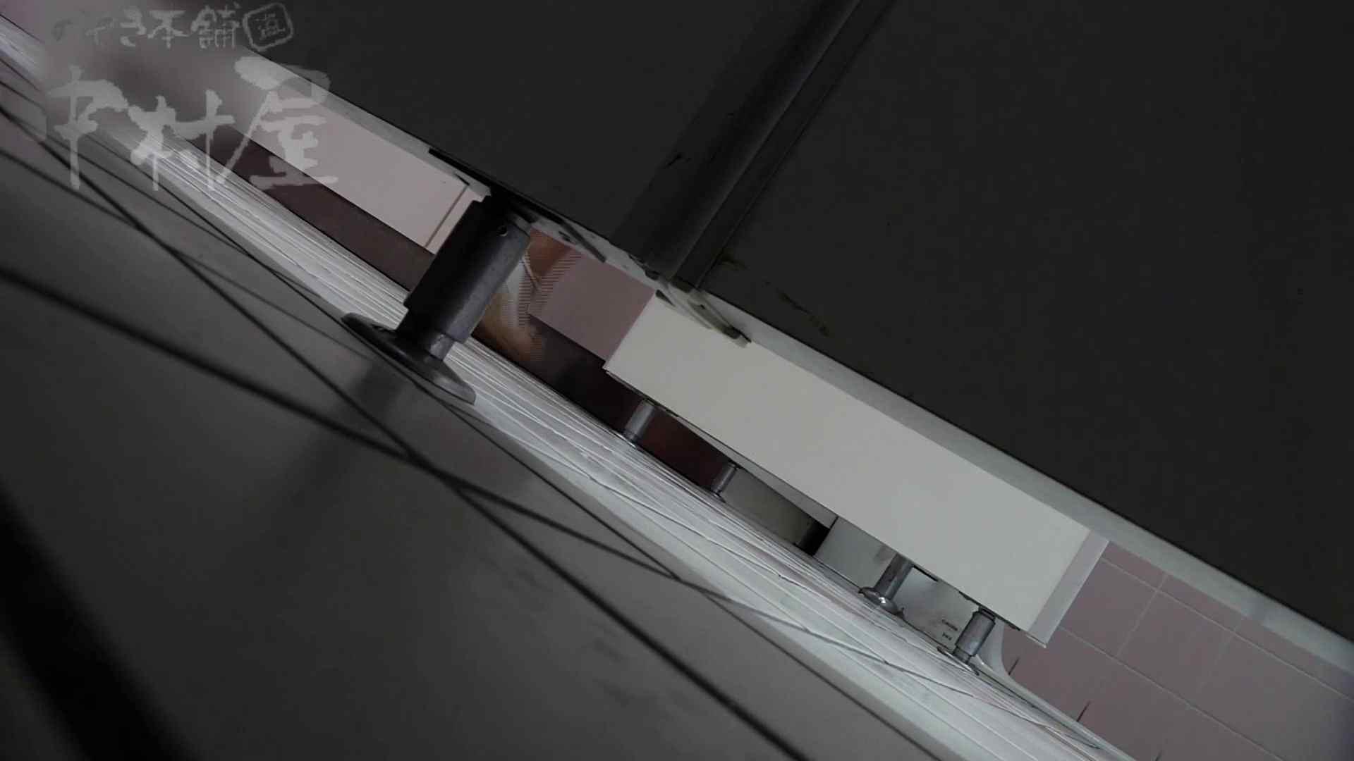 美しい日本の未来 No.33 黒パンをやっと下げる? 女子トイレ編 スケベ動画紹介 106PIX 5
