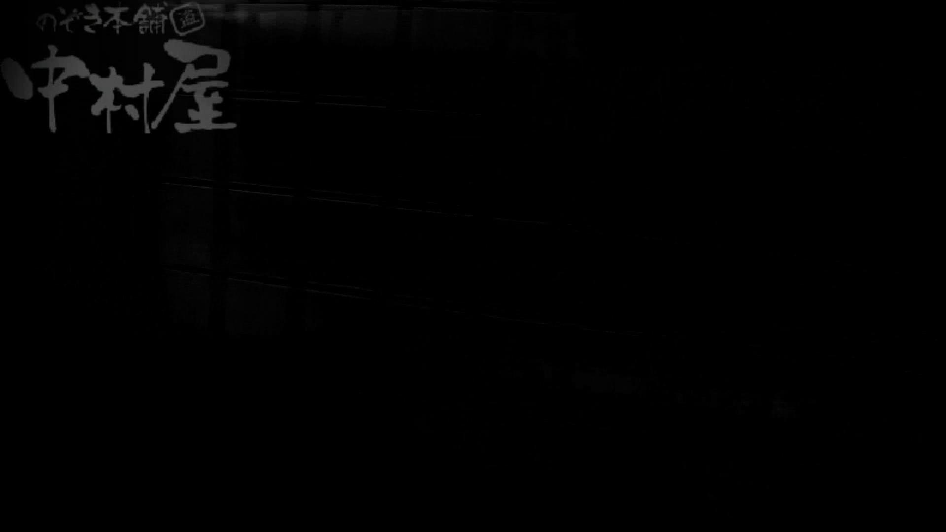美しい日本の未来 No.35 最長時間更新更に強者登場 盗撮シリーズ ぱこり動画紹介 108PIX 65