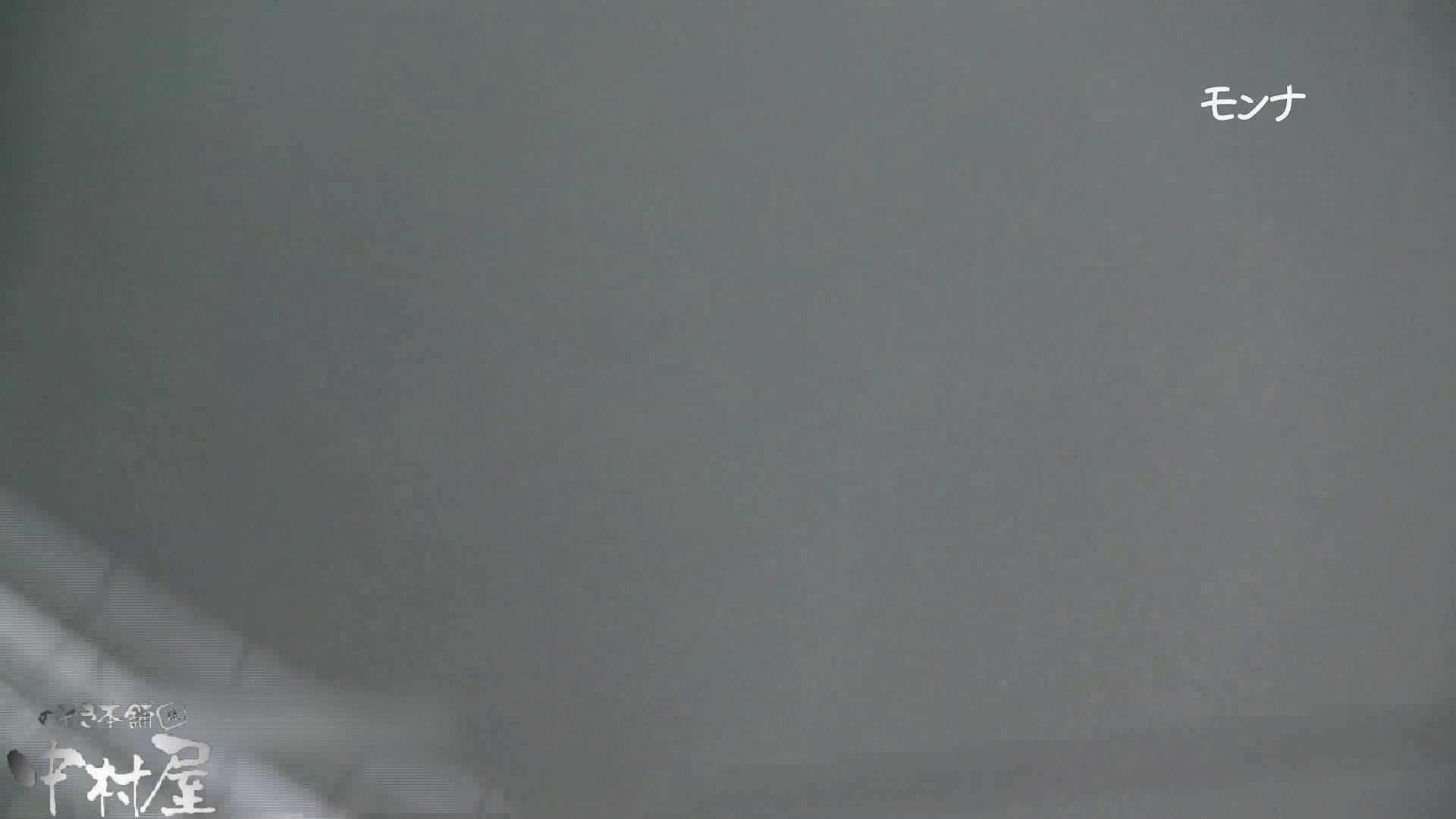【美しい日本の未来 No.109】前編 おまんこ見放題   盗撮シリーズ  91PIX 11