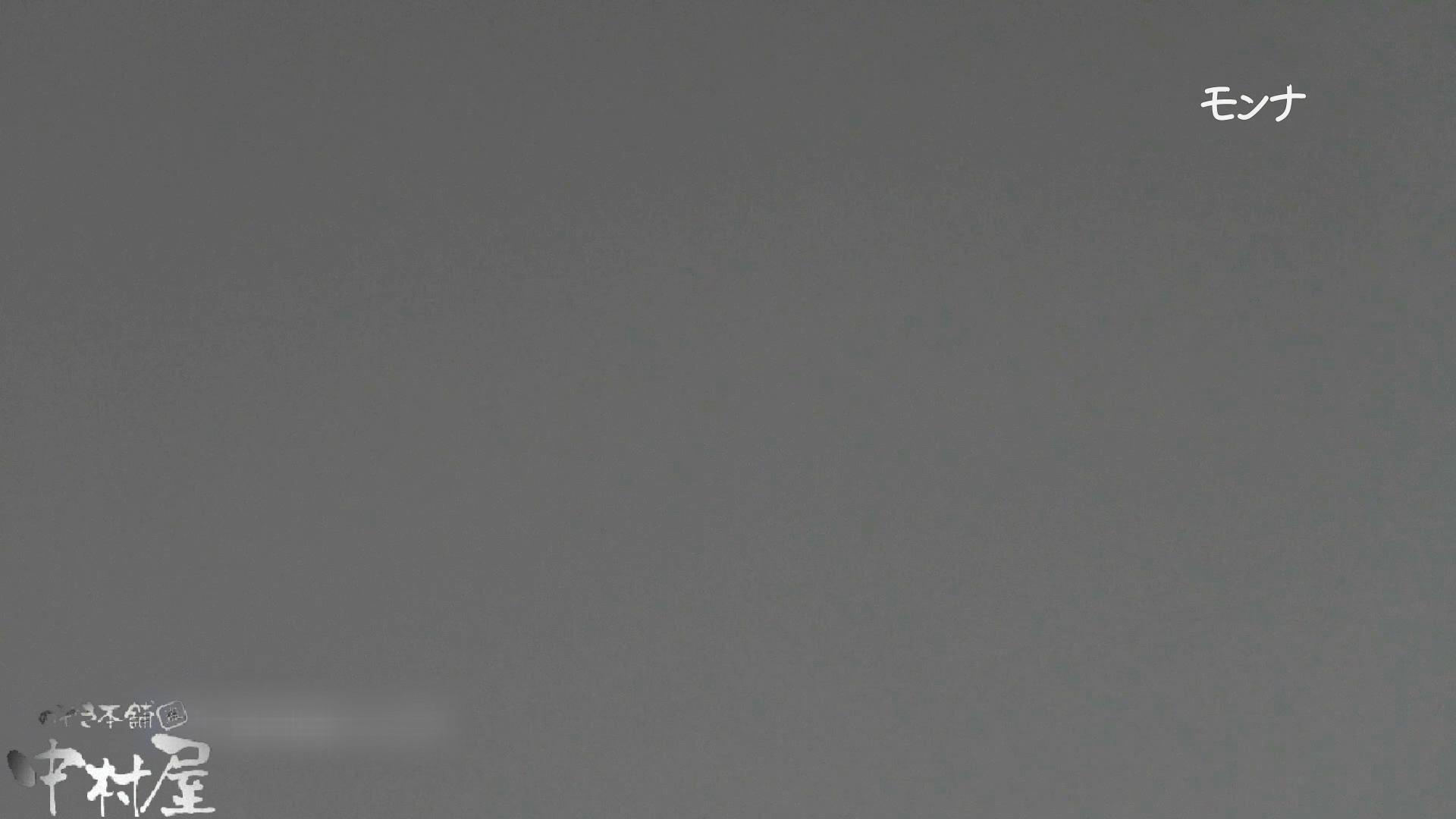 【美しい日本の未来 No.109】前編 おまんこ見放題   盗撮シリーズ  91PIX 57
