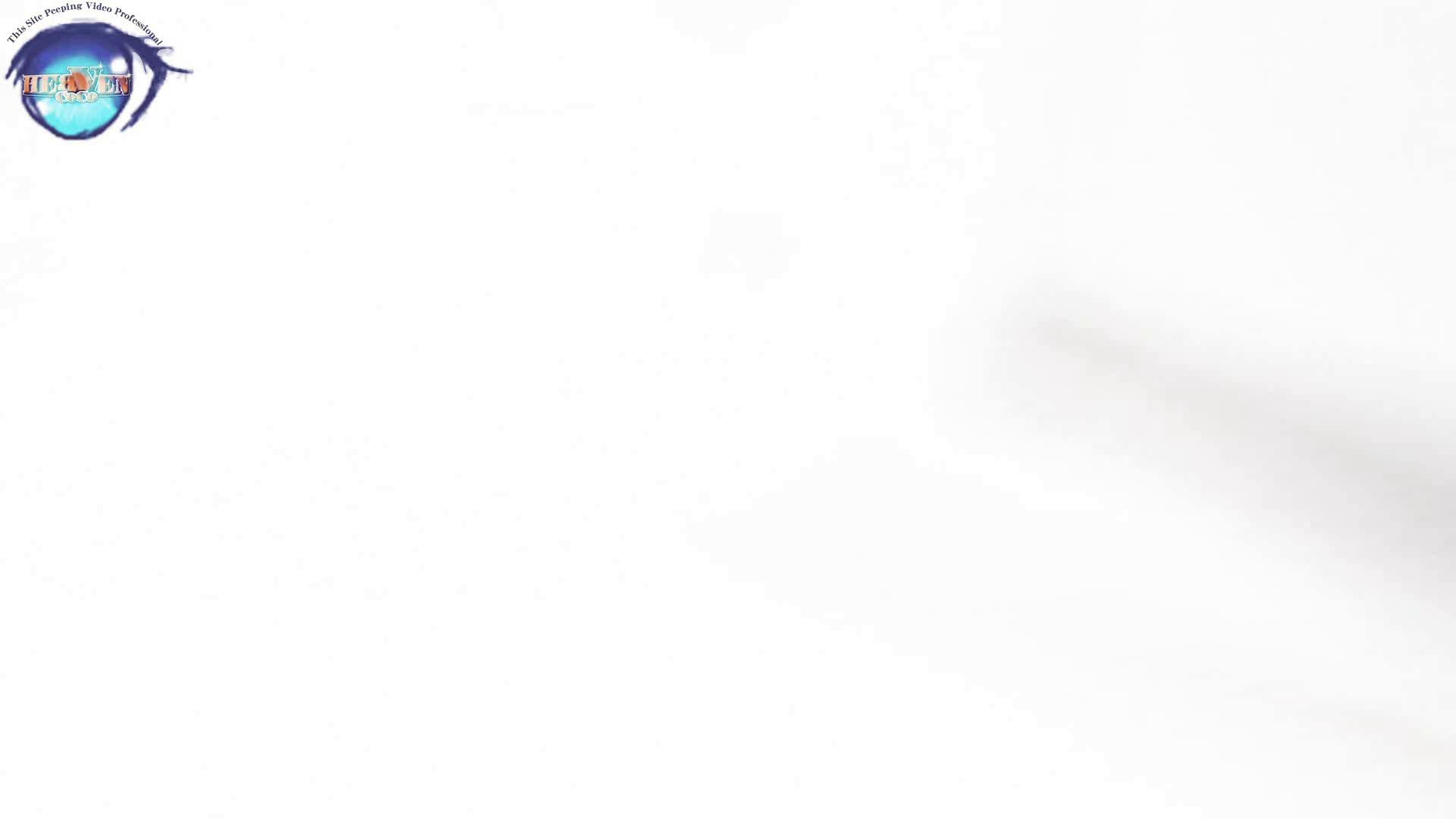 雅さんの独断と偏見で集めた動画集 厠編vol.01 盗撮シリーズ   おまんこ見放題  88PIX 5