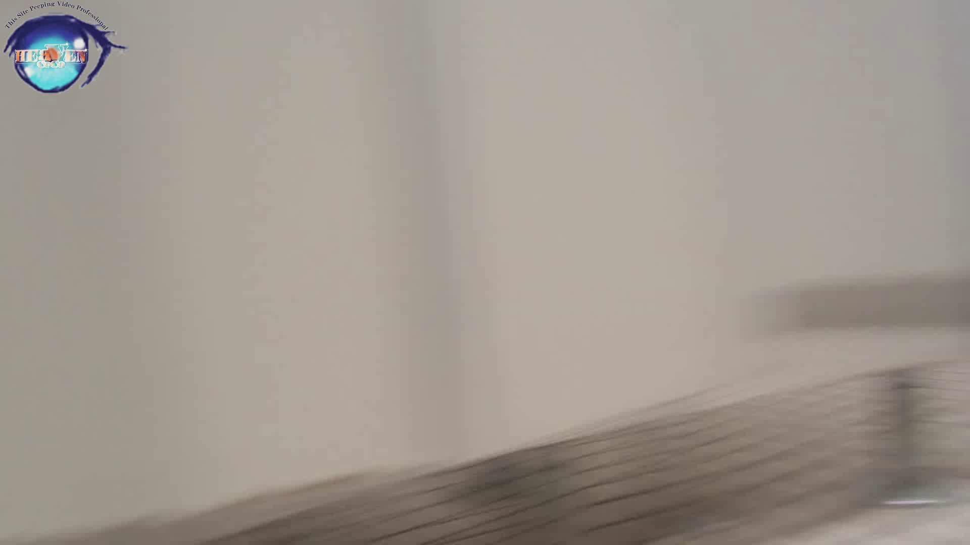雅さんの独断と偏見で集めた動画集 厠編vol.01 盗撮シリーズ   おまんこ見放題  88PIX 29