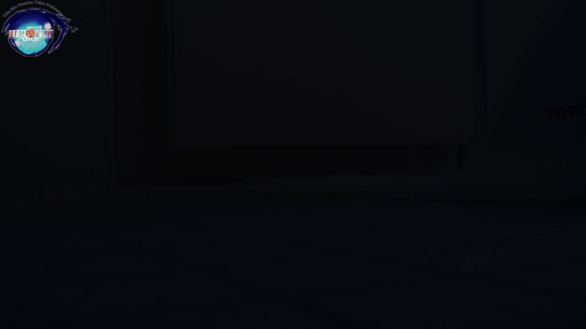 雅さんの独断と偏見で集めた動画集 厠編vol.01 盗撮シリーズ  88PIX 58