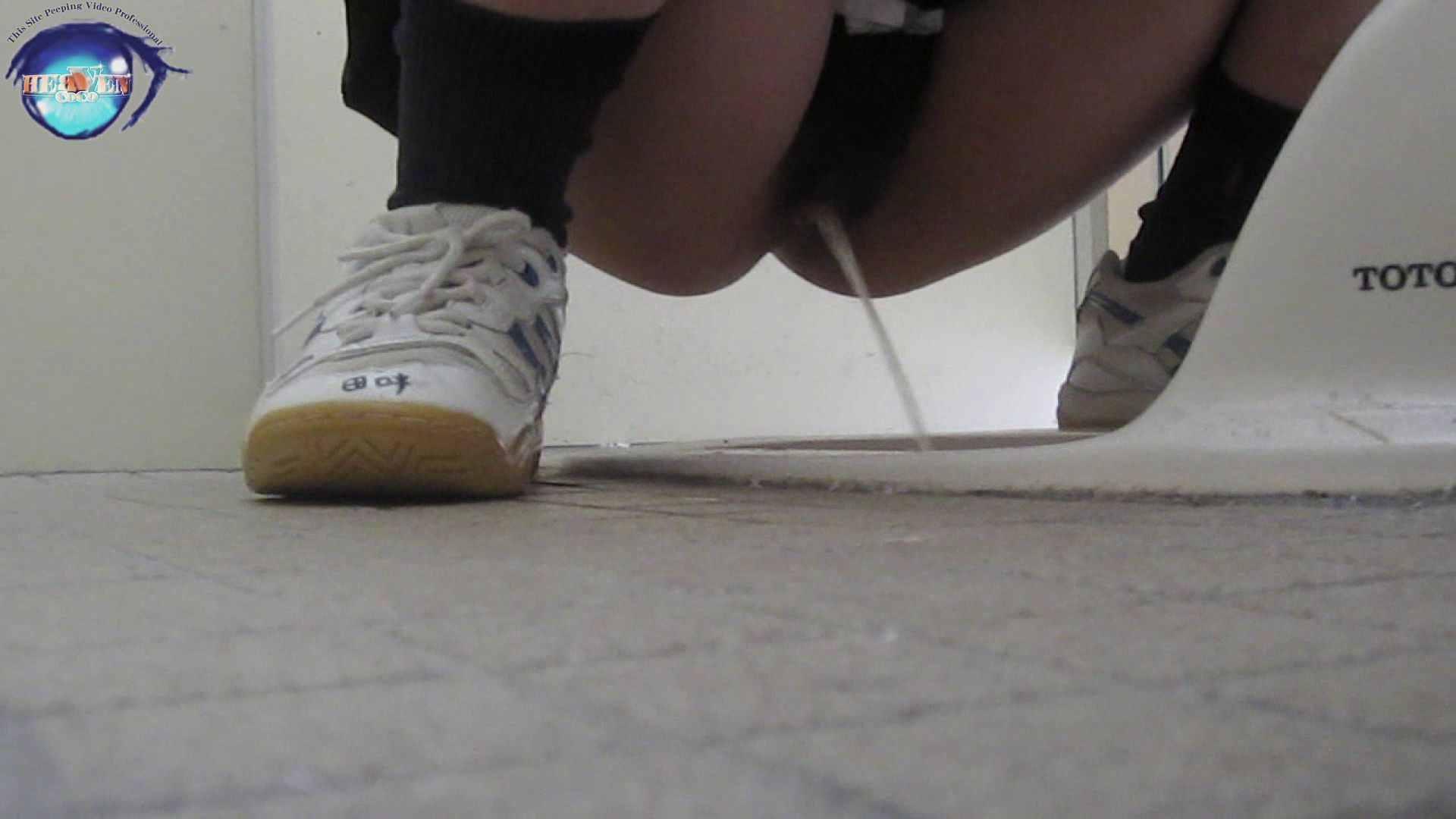 雅さんの独断と偏見で集めた動画集 厠編vol.01 盗撮シリーズ   おまんこ見放題  88PIX 65