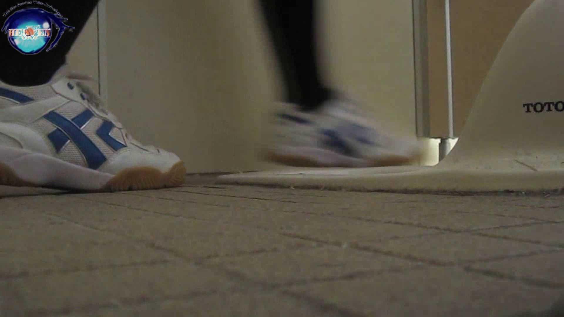 雅さんの独断と偏見で集めた動画集 厠編vol.01 盗撮シリーズ   おまんこ見放題  88PIX 77