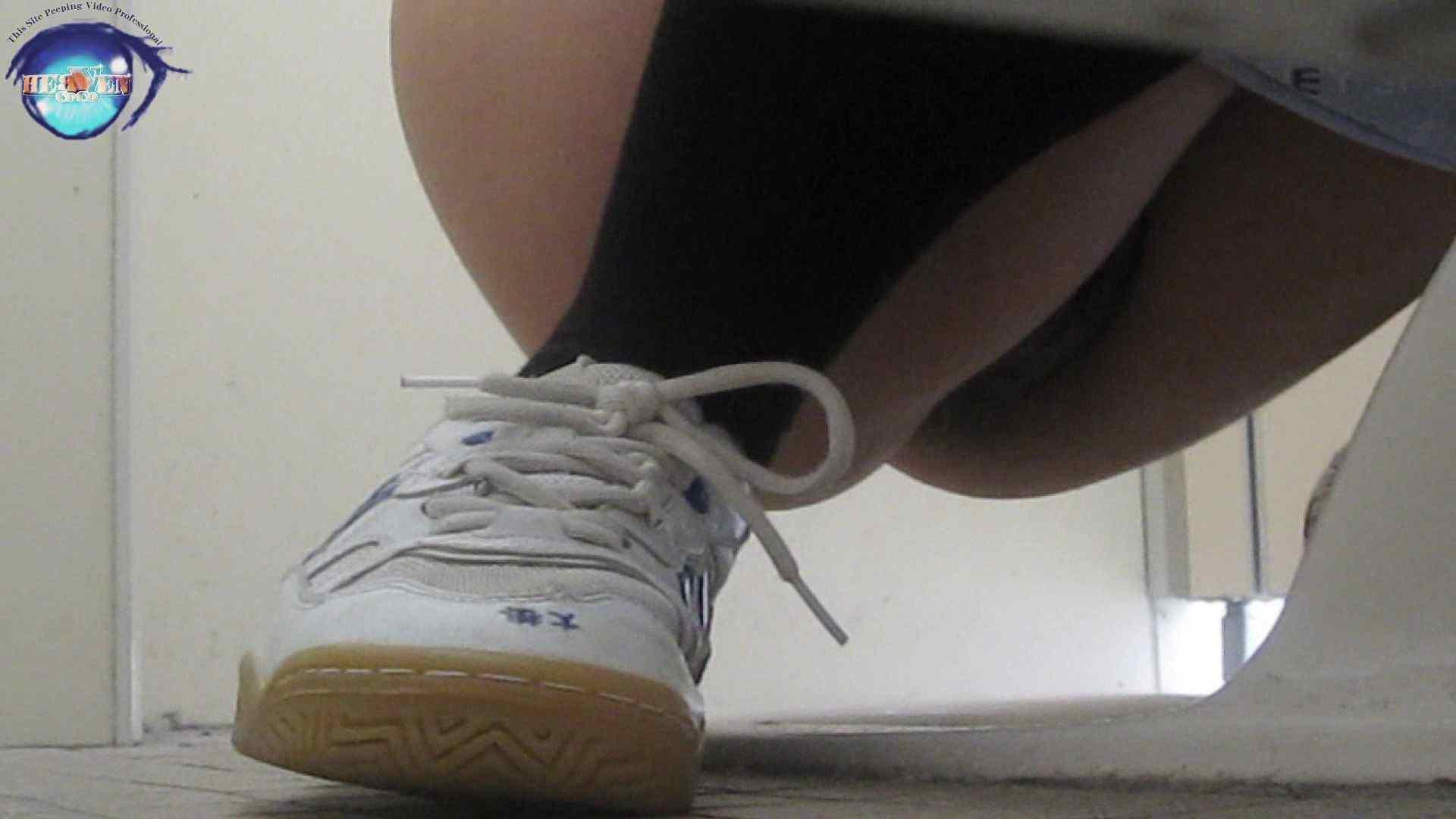 雅さんの独断と偏見で集めた動画集 厠編vol.01 盗撮シリーズ   おまんこ見放題  88PIX 87