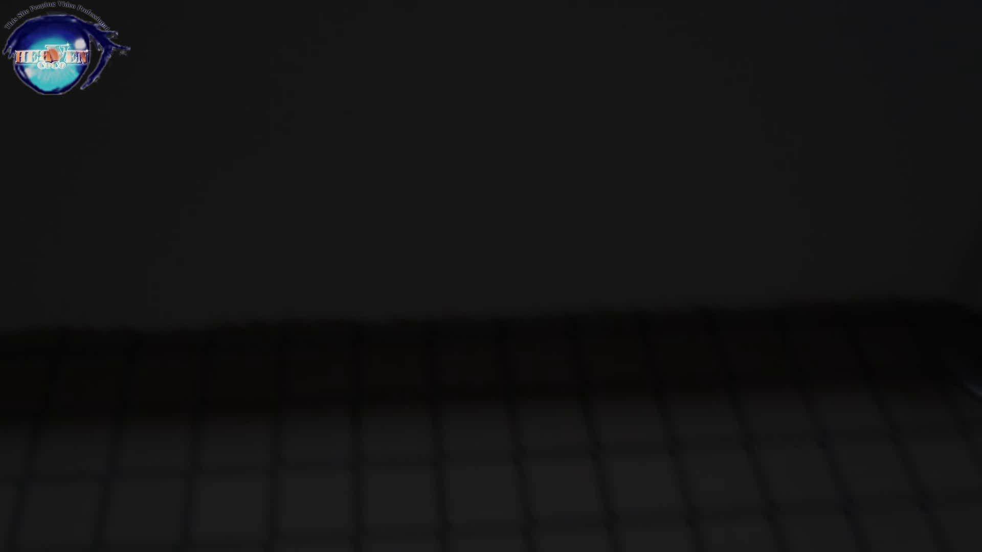 雅さんの独断と偏見で集めた動画集 厠編vol.02 おまんこ見放題   盗撮シリーズ  78PIX 1