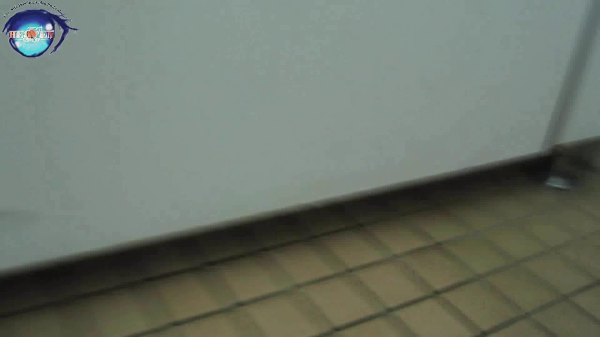 雅さんの独断と偏見で集めた動画集 厠編vol.02 おまんこ見放題  78PIX 40