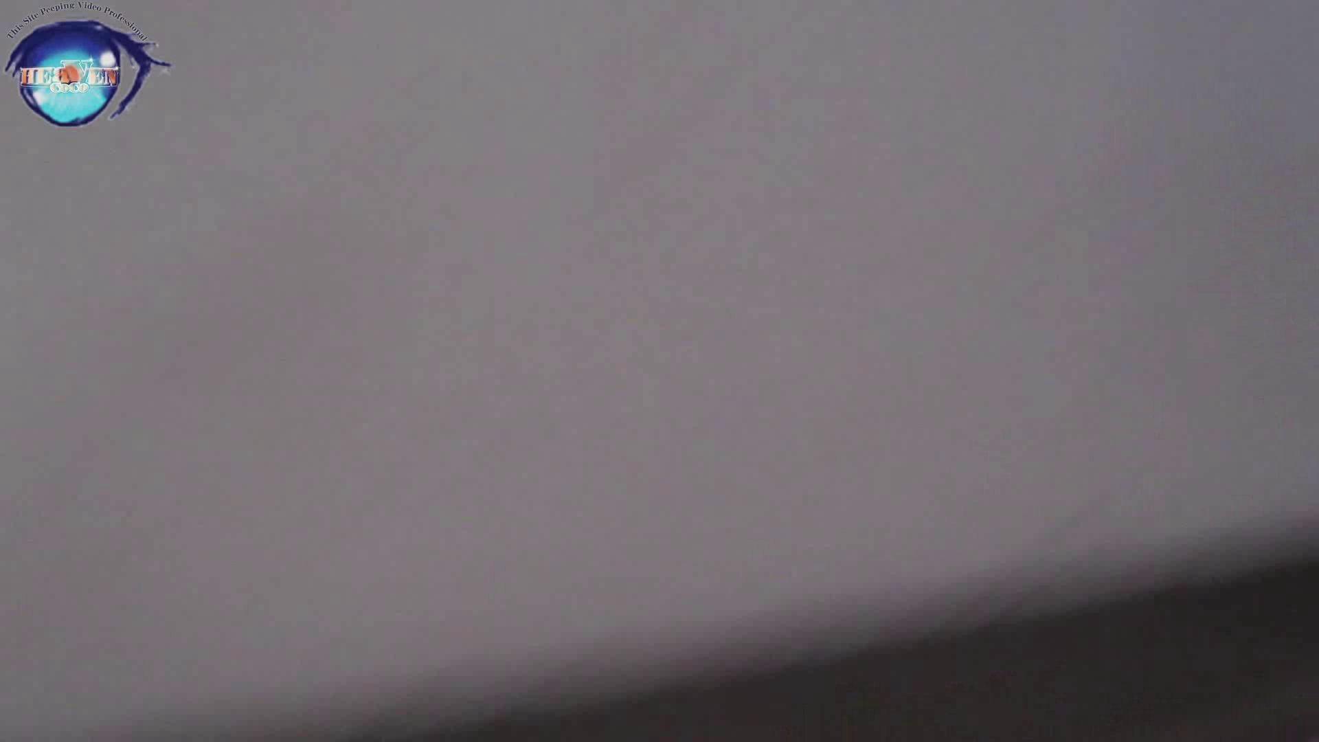 雅さんの独断と偏見で集めた動画集 厠編vol.02 おまんこ見放題  78PIX 76