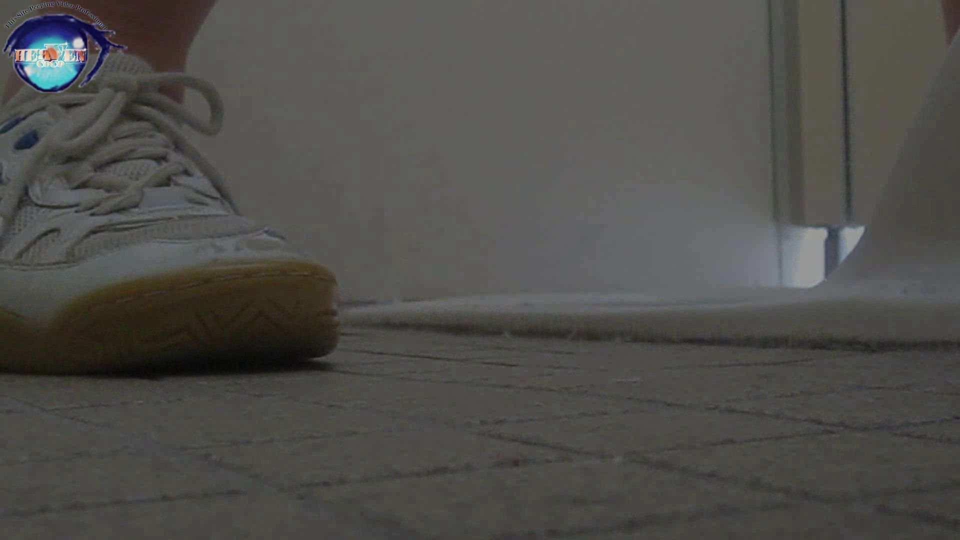 雅さんの独断と偏見で集めた動画集 厠編vol.03 おまんこ見放題   盗撮シリーズ  113PIX 83
