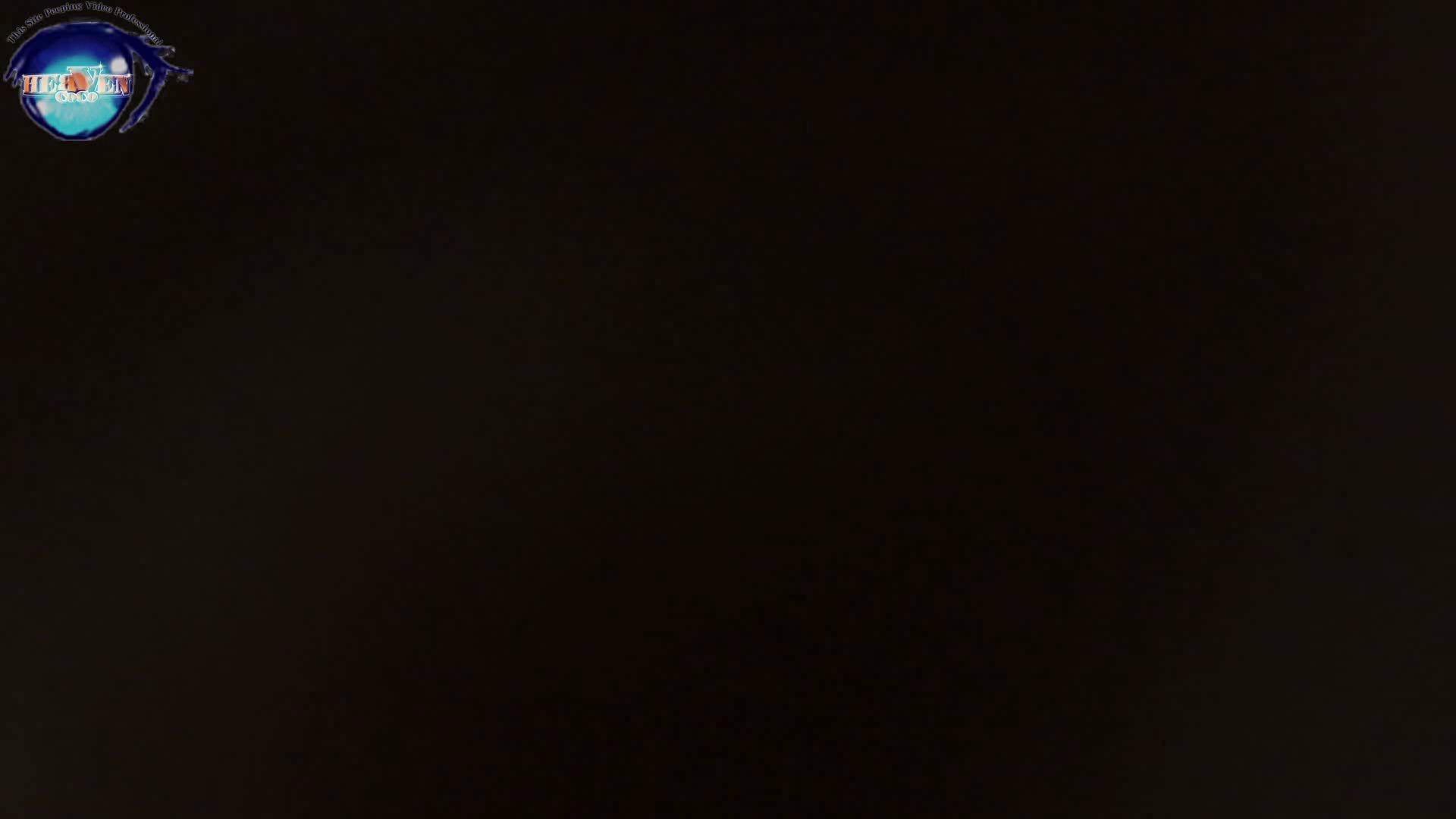 雅さんの独断と偏見で集めた動画集 厠編vol.05 盗撮シリーズ   おまんこ見放題  80PIX 1