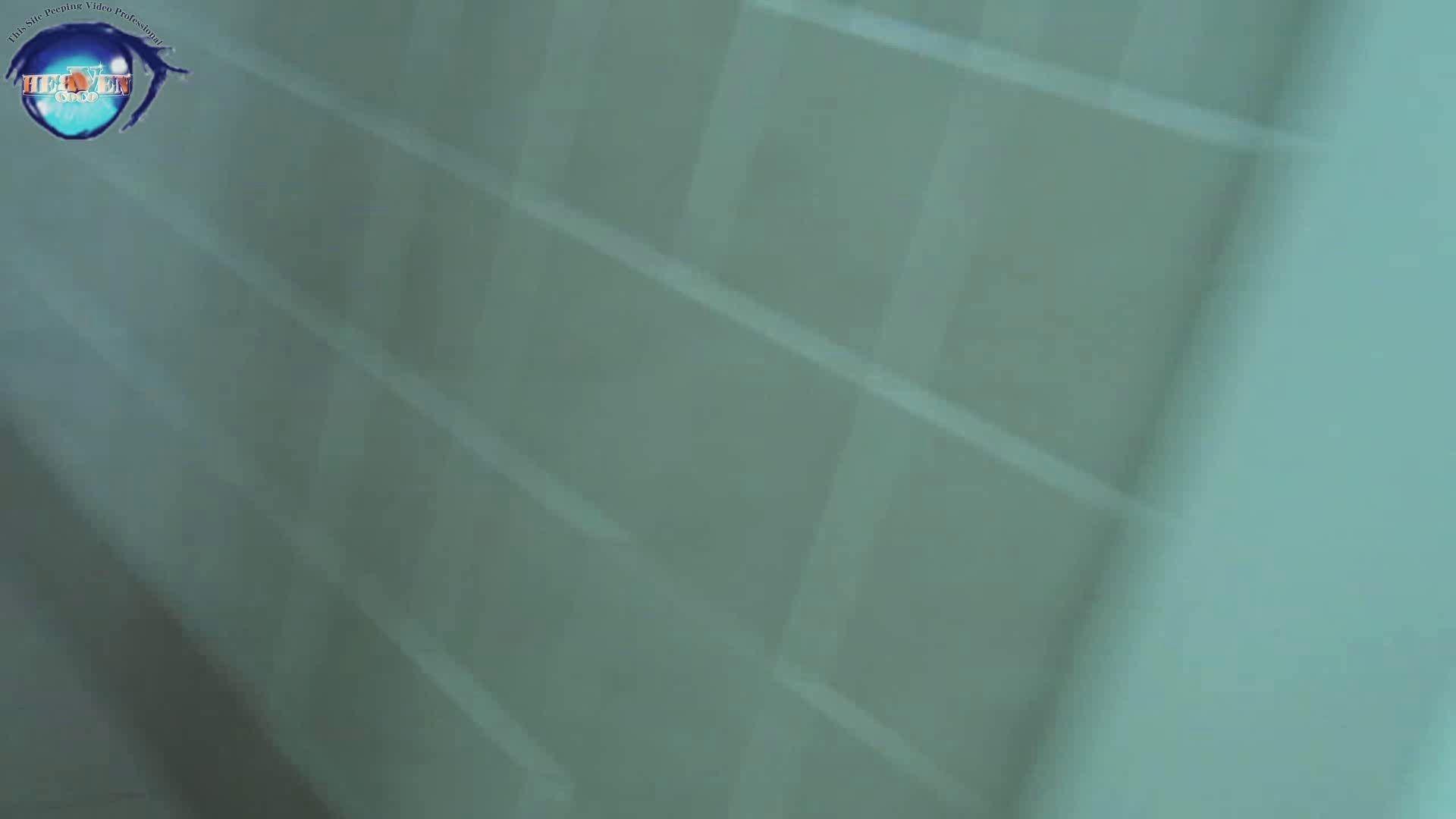 雅さんの独断と偏見で集めた動画集 厠編vol.05 盗撮シリーズ  80PIX 2