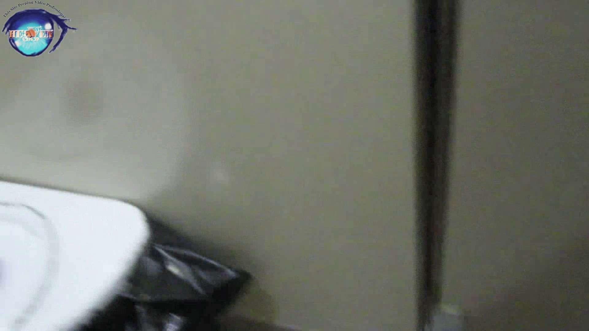 雅さんの独断と偏見で集めた動画集 厠編vol.12 おまんこ見放題 | 盗撮シリーズ  97PIX 3