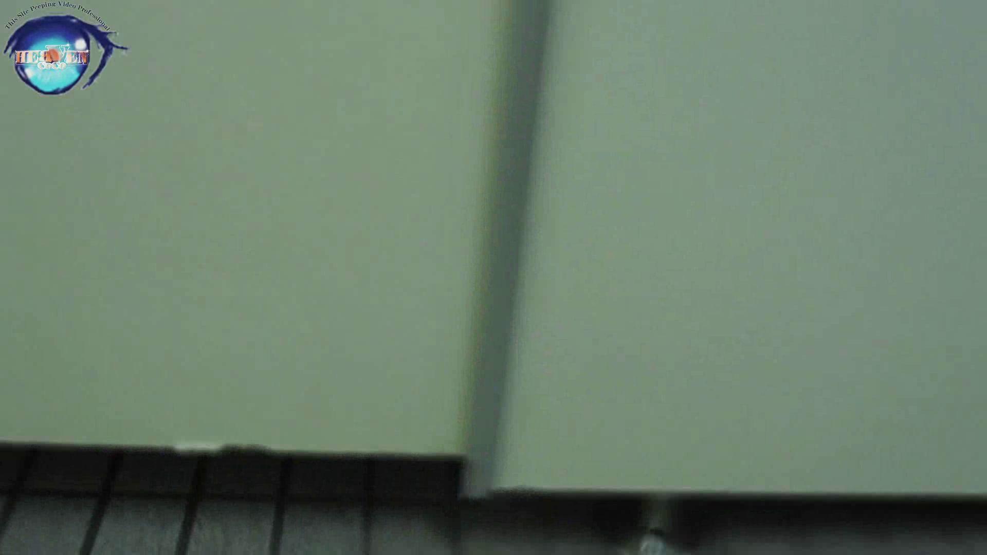 雅さんの独断と偏見で集めた動画集 厠編vol.12 おまんこ見放題  97PIX 50