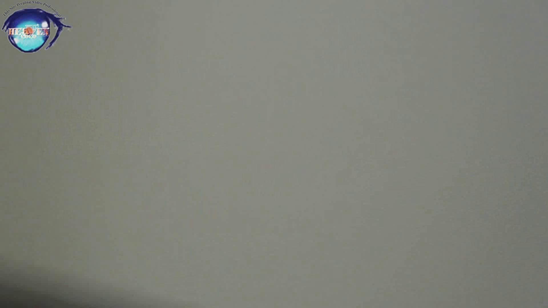 雅さんの独断と偏見で集めた動画集 厠編vol.12 おまんこ見放題 | 盗撮シリーズ  97PIX 55
