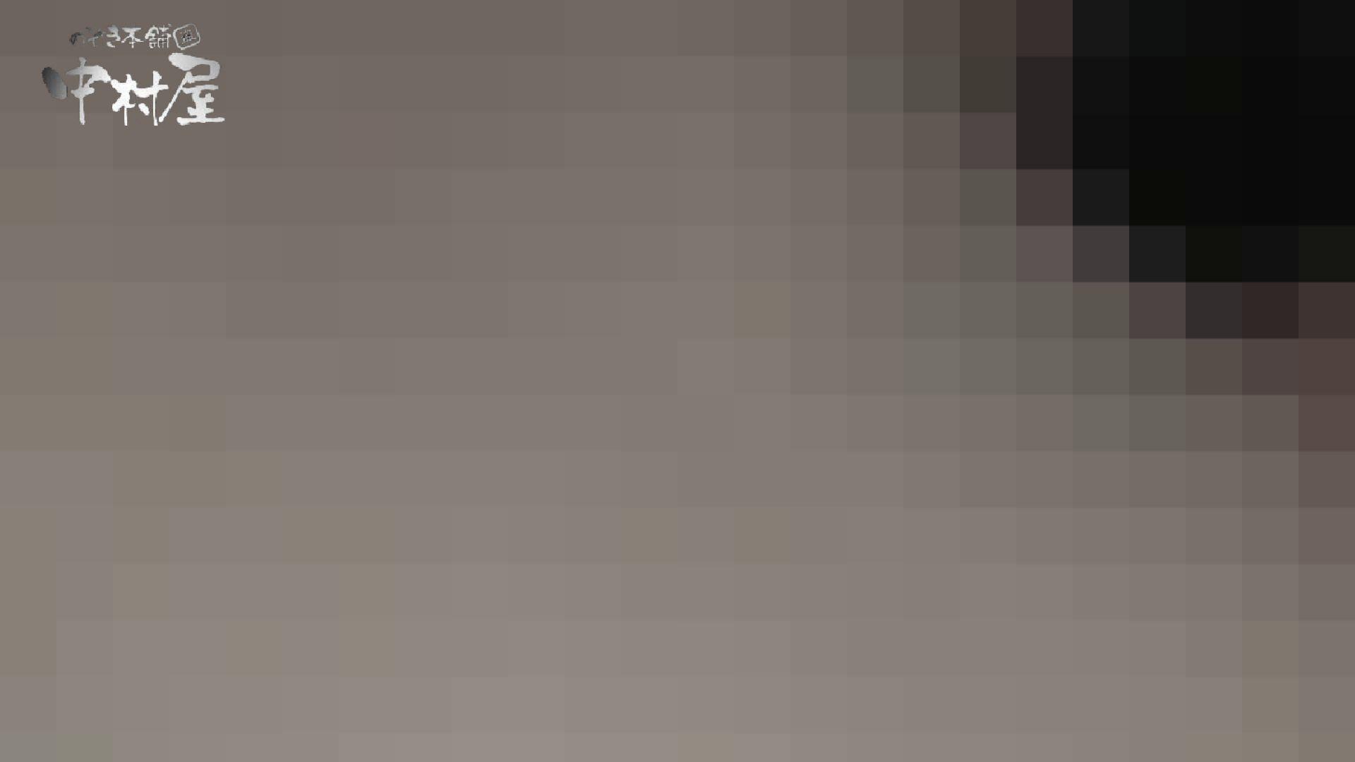 【世界の射窓から】世界の射窓から vol.14 洗面所編  102PIX 14