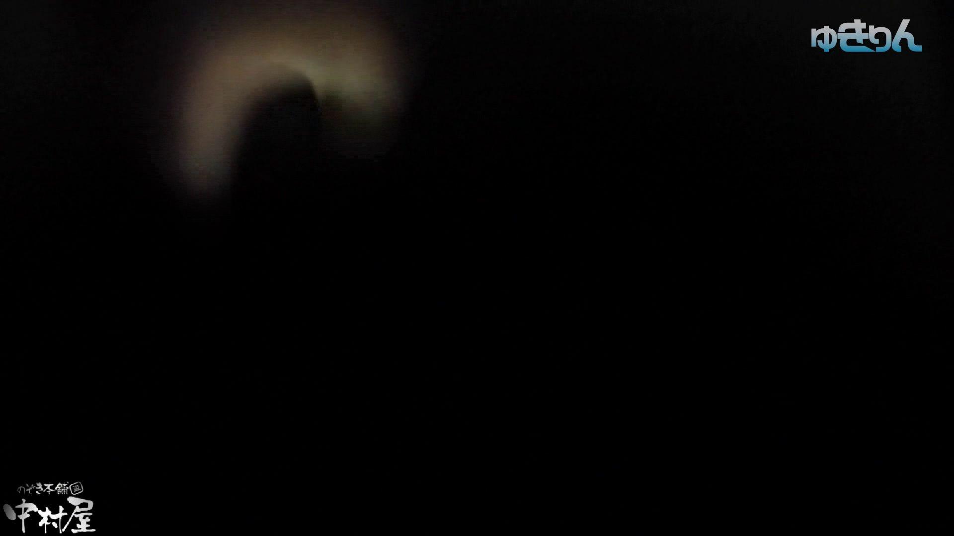 【世界の射窓から~ステーション編~】ステーション編 vol54 便秘のせいで長蛇の列、じっくり撮らせて頂きました 盗撮シリーズ  79PIX 40