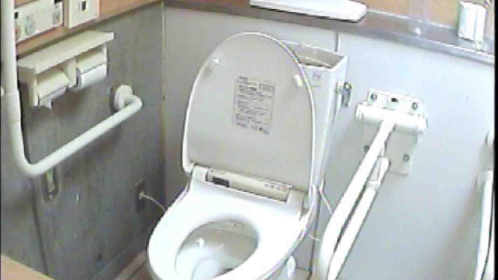 女子トイレ盗撮若い嬢編vol.01 排泄編 ワレメ動画紹介 86PIX 6