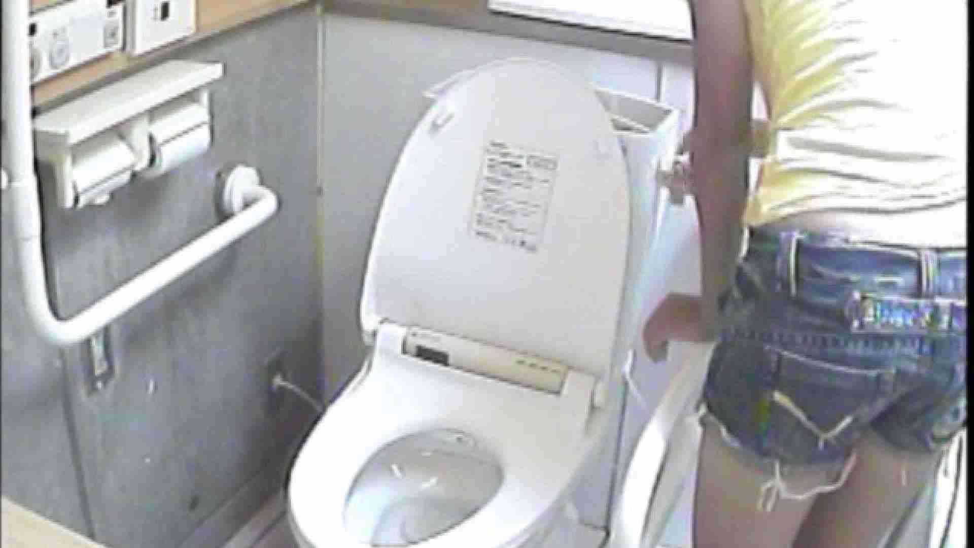 女子トイレ盗撮若い嬢編vol.01 トイレ 盗み撮り動画 86PIX 36