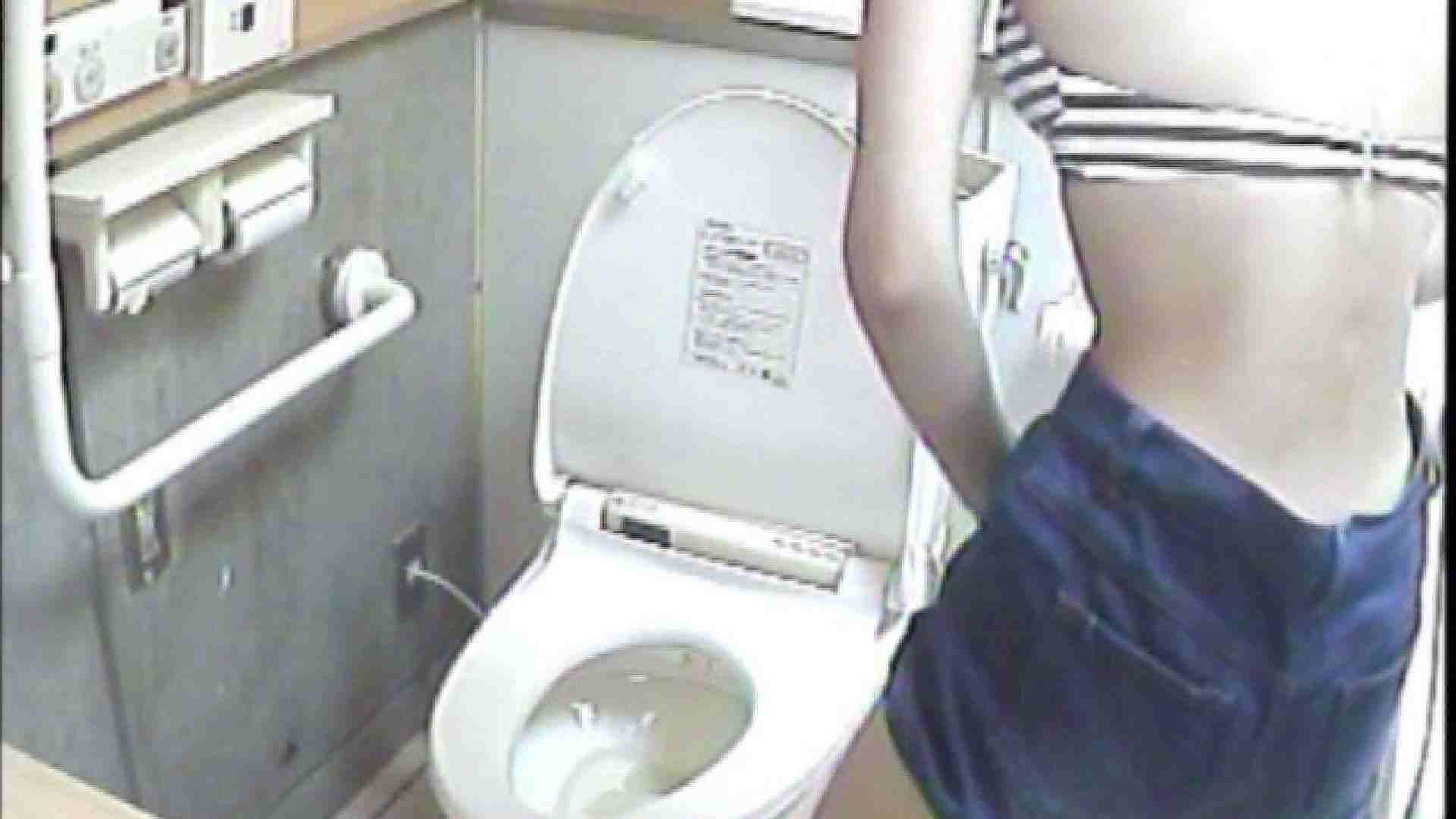 女子トイレ盗撮若い嬢編vol.02 水着 おめこ無修正画像 111PIX 63