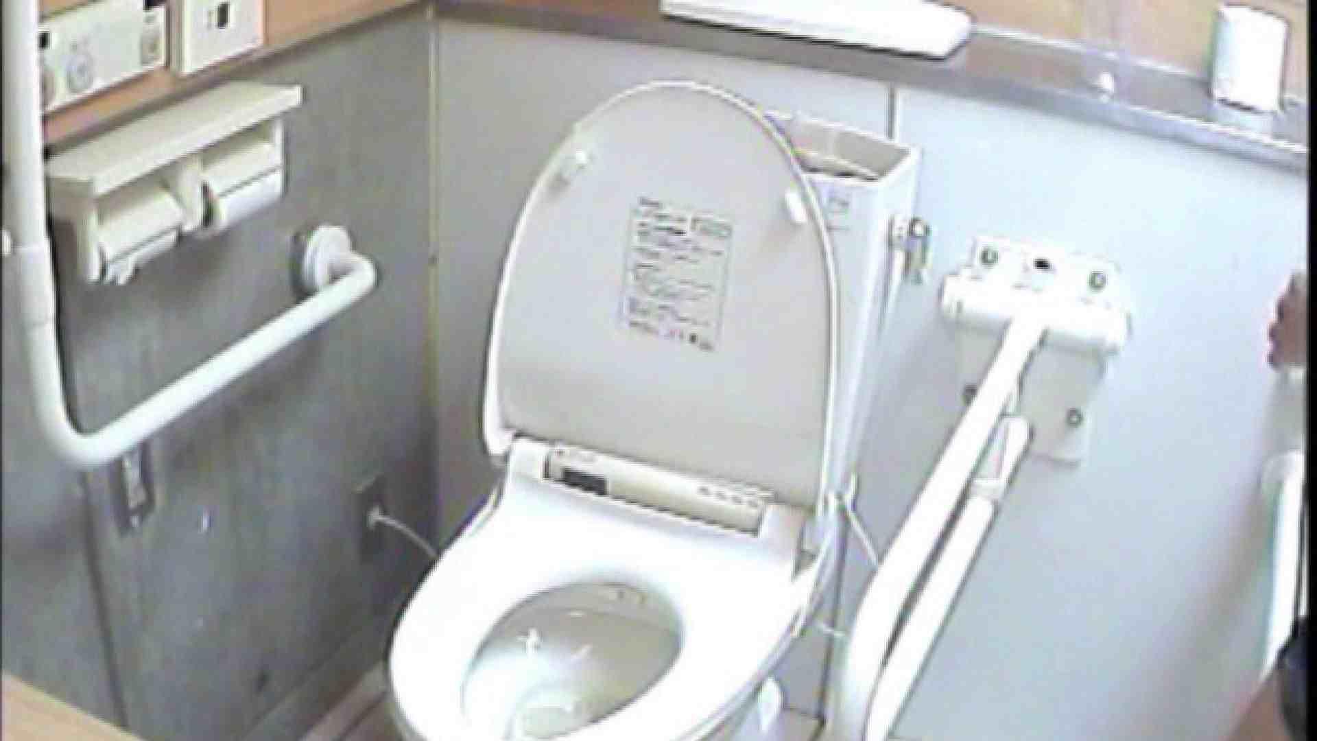 女子トイレ盗撮若い嬢編vol.02 トイレ 性交動画流出 111PIX 68