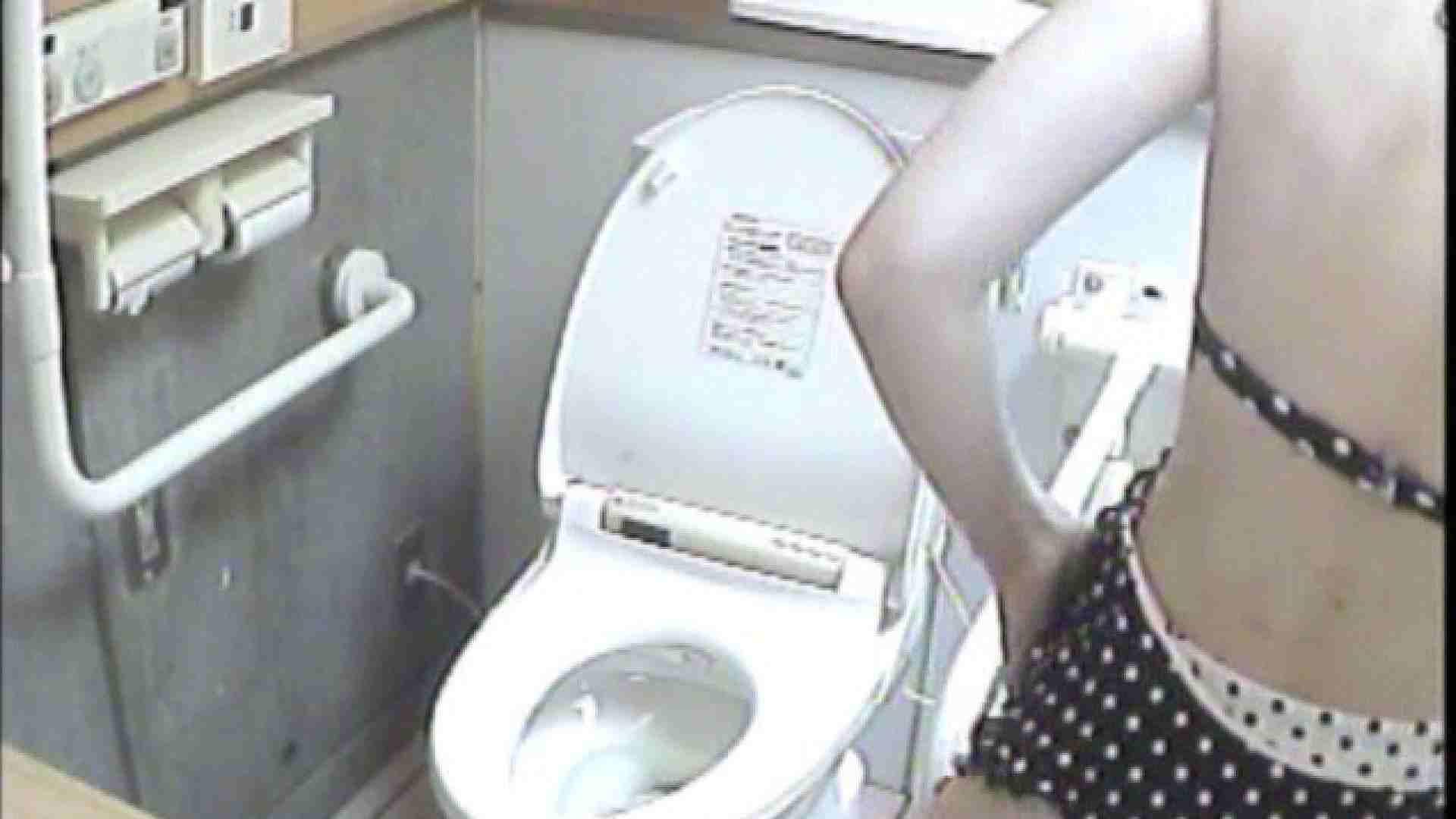 女子トイレ盗撮若い嬢編vol.02 トイレ 性交動画流出 111PIX 100