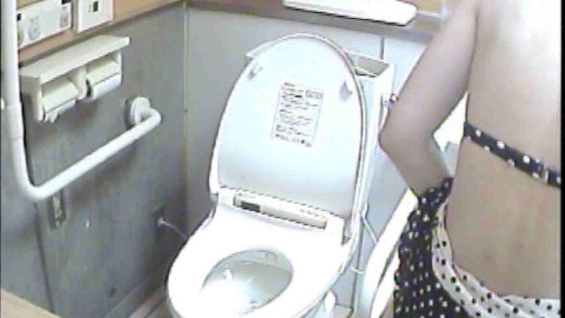 女子トイレ盗撮若い嬢編vol.02 排泄編 セックス画像 111PIX 109