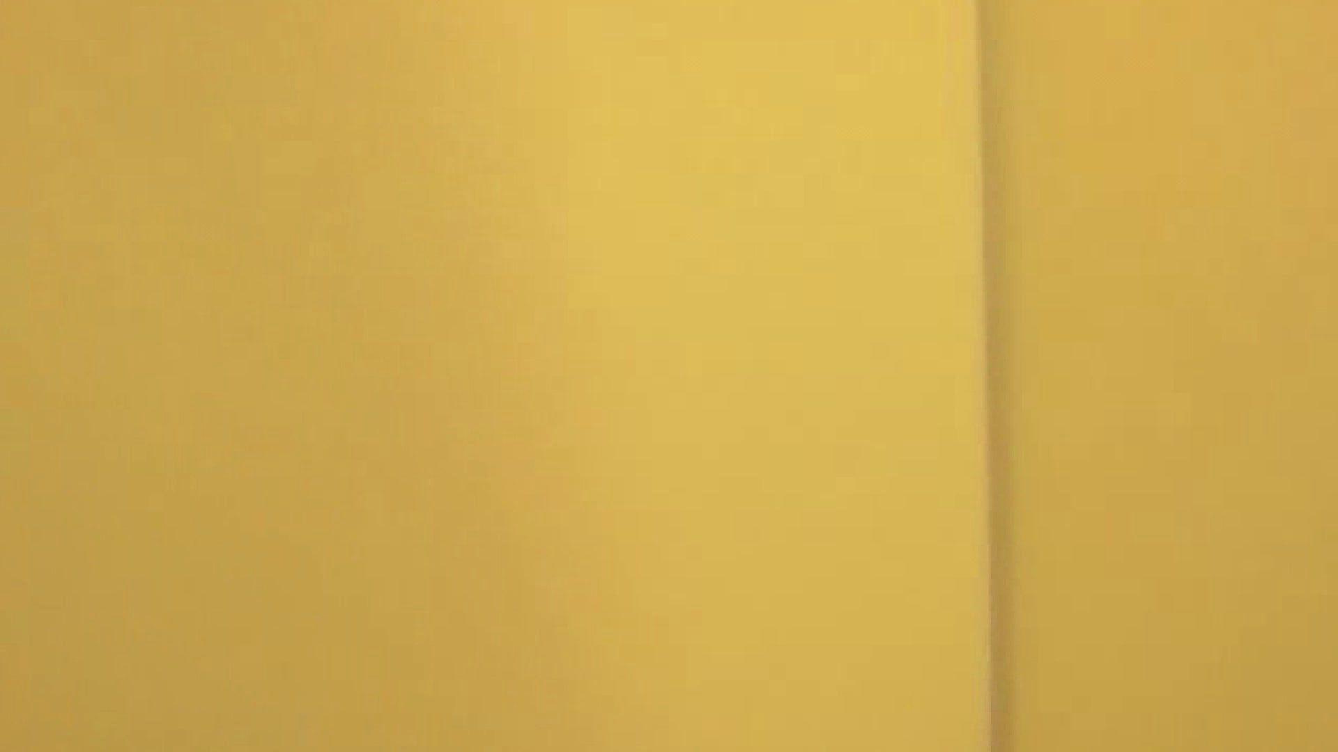 女子トイレ盗撮若い嬢編vol.06 トイレ 盗撮 88PIX 45