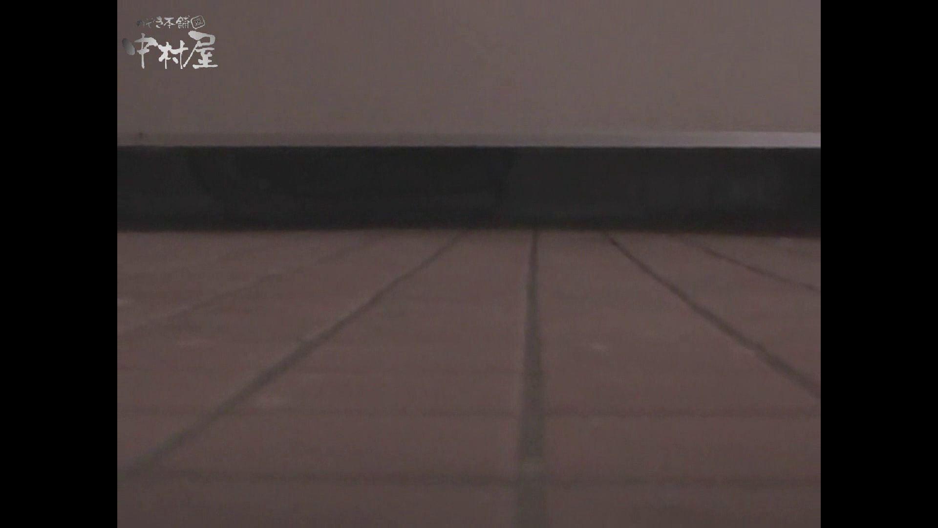 女子トイレ盗撮若い嬢編vol.10 お姉さんのオマタ | 潜入  84PIX 11