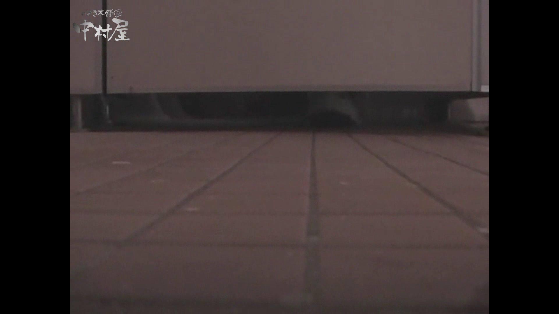 女子トイレ盗撮若い嬢編vol.10 盗撮シリーズ ぱこり動画紹介 84PIX 12