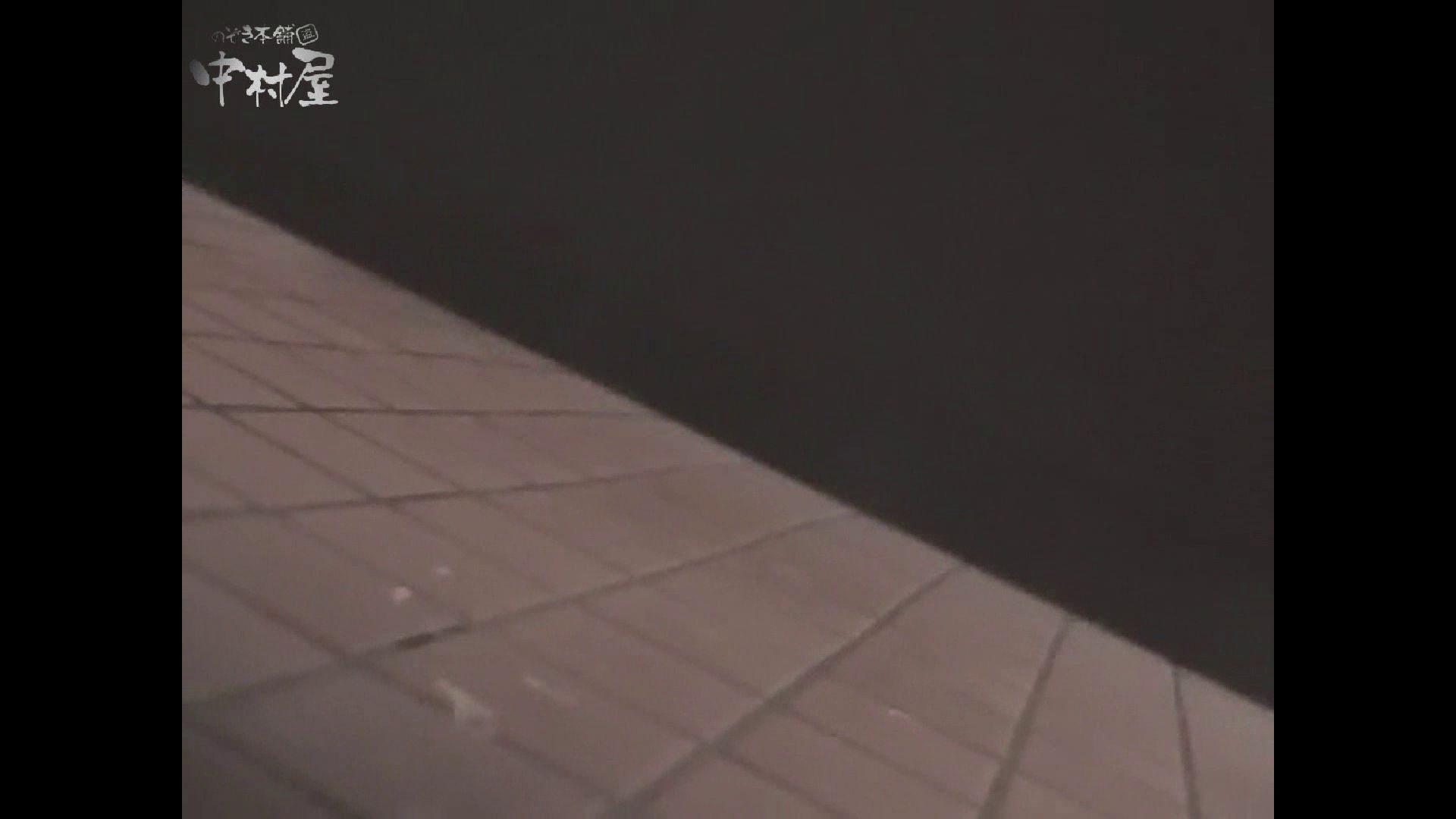 女子トイレ盗撮若い嬢編vol.10 厠・・・ ワレメ動画紹介 84PIX 65