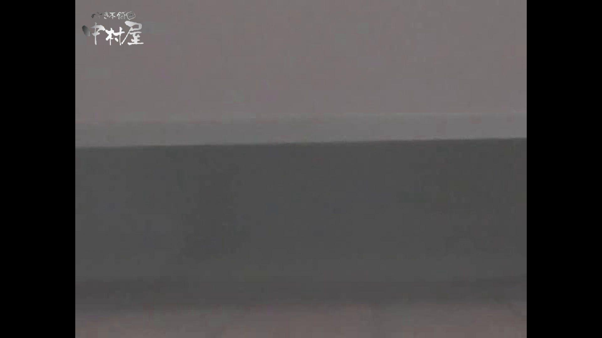女子トイレ盗撮若い嬢編vol.12 オマンコもろ のぞき動画キャプチャ 107PIX 55