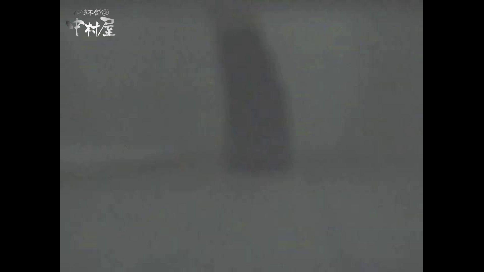女子トイレ盗撮若い嬢編vol.12 盗撮シリーズ 盗撮動画紹介 107PIX 62