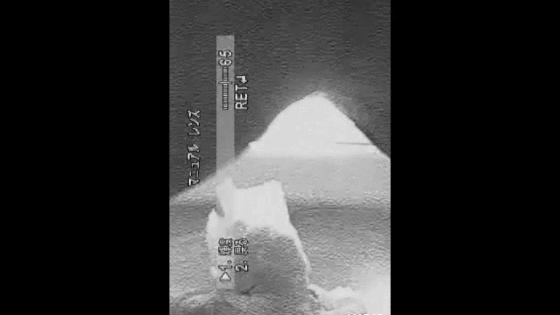 巨乳おまんこ:キレカワ女子大生の秘密の洗面所!Vol.021:ピープフォックス(盗撮狐)