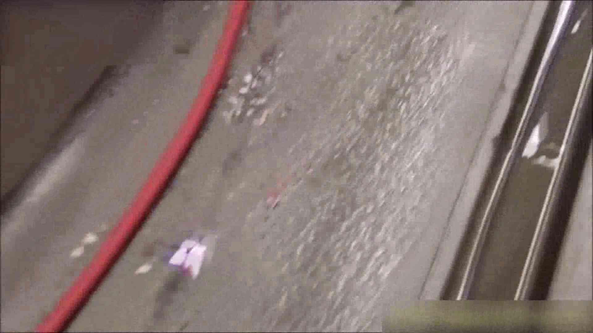巨乳おまんこ:洗面所盗撮~隣の美人お姉さんVol.10:ピープフォックス(盗撮狐)