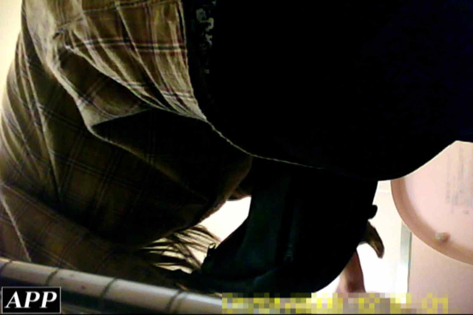 巨乳おまんこ:3視点洗面所 vol.008:ピープフォックス(盗撮狐)