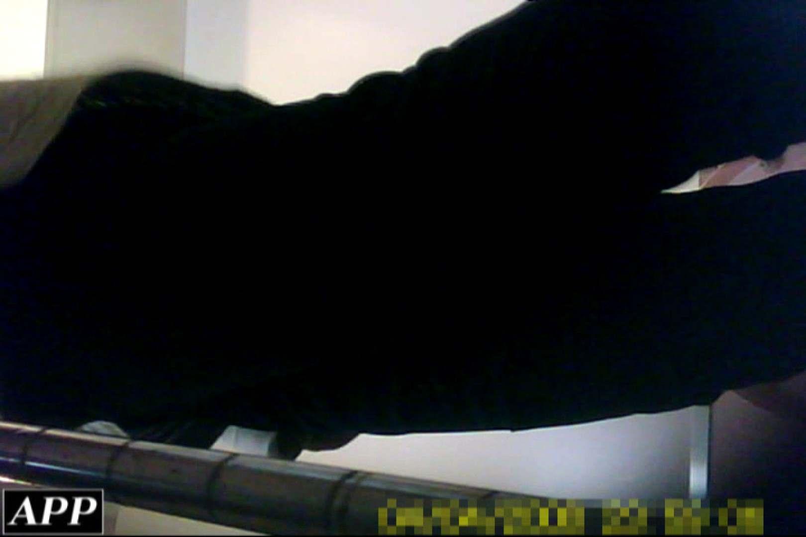巨乳おまんこ:3視点洗面所 vol.023:ピープフォックス(盗撮狐)