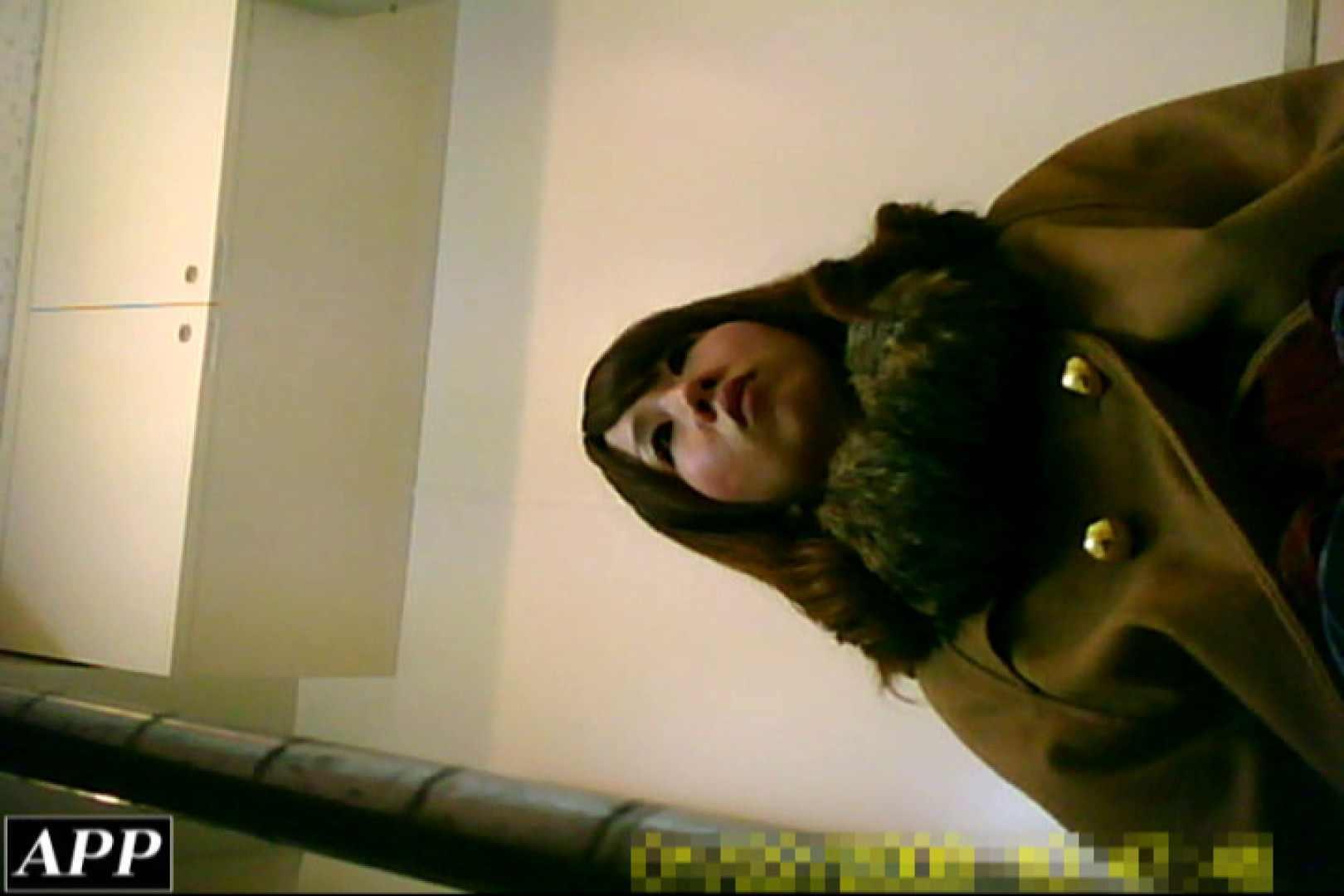 巨乳おまんこ:3視点洗面所 vol.049:ピープフォックス(盗撮狐)