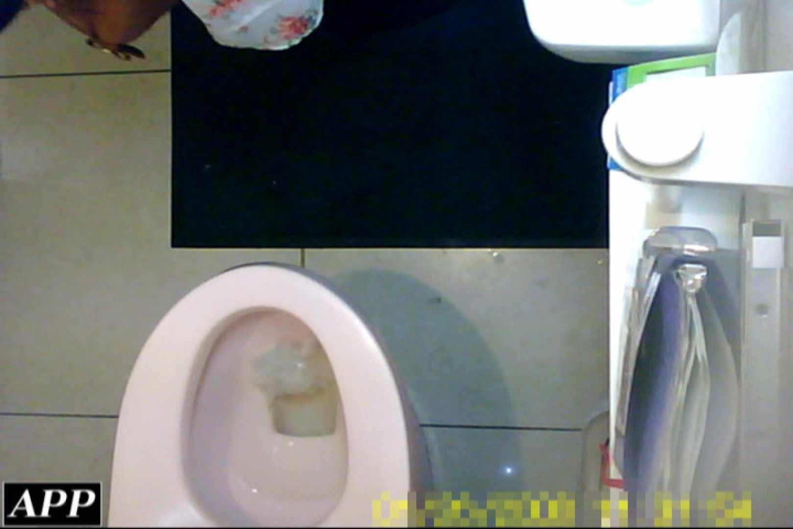 巨乳おまんこ:3視点洗面所 vol.104:ピープフォックス(盗撮狐)