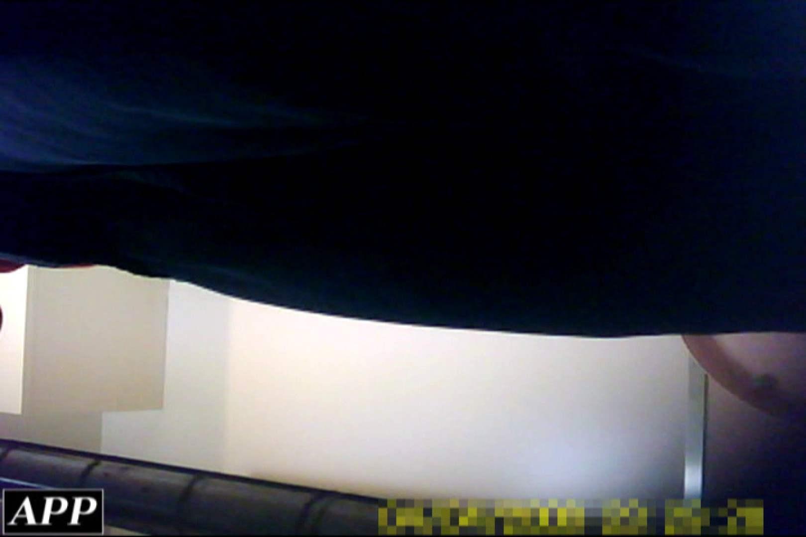 巨乳おまんこ:3視点洗面所 vol.143:ピープフォックス(盗撮狐)