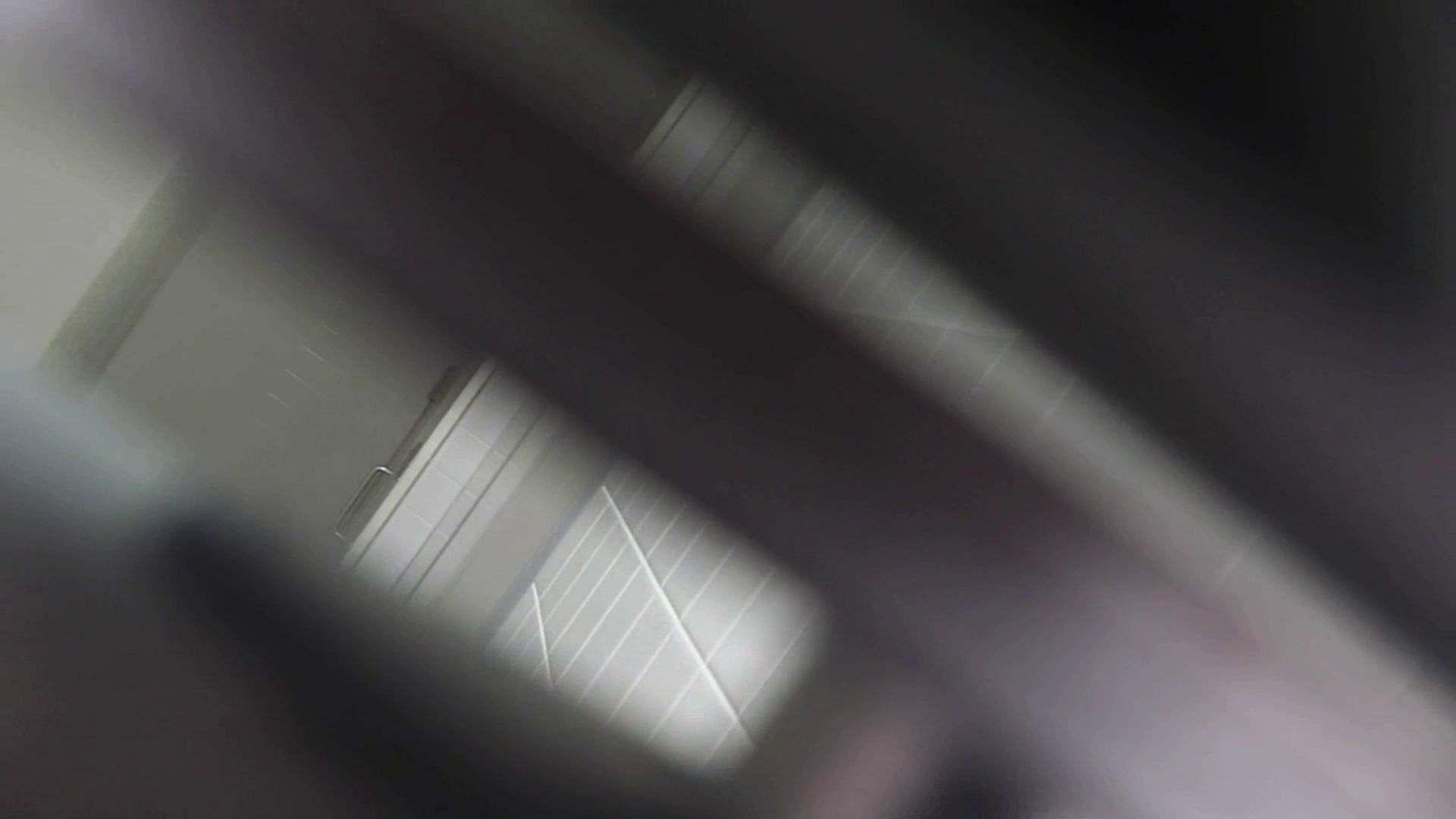 巨乳おまんこ:vol.29 命がけ潜伏洗面所! 粒ぞろい:ピープフォックス(盗撮狐)
