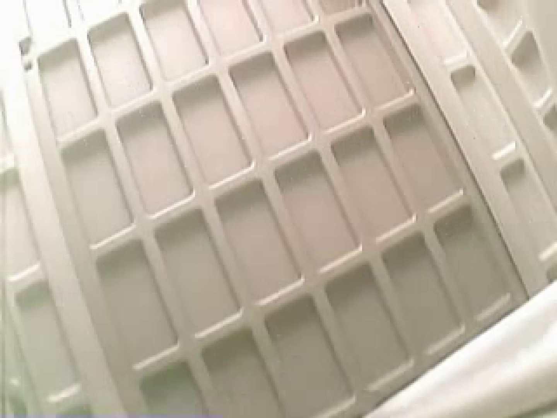 巨乳おまんこ:野外の洗面所は危険ですVol.1:ピープフォックス(盗撮狐)