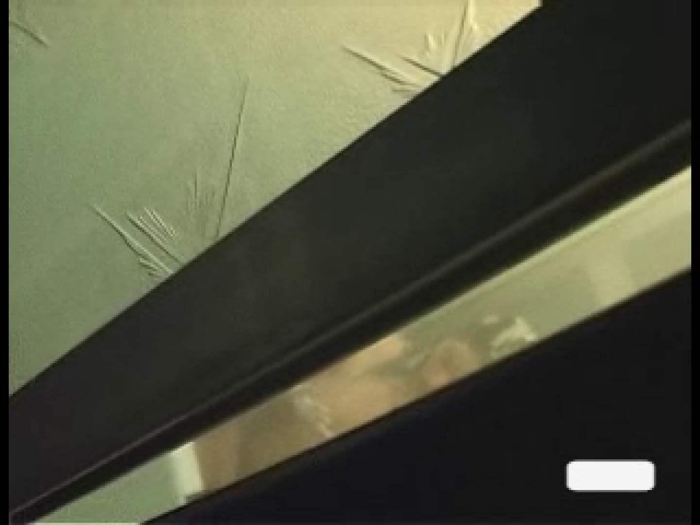 巨乳おまんこ:極上!!民家盗撮Vol.8:ピープフォックス(盗撮狐)