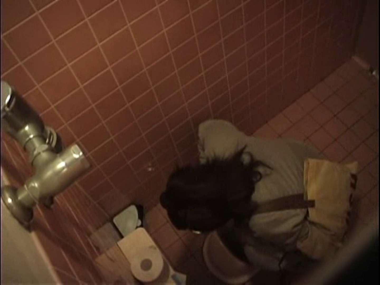 巨乳おまんこ:排便・排尿コレクションVol.5:ピープフォックス(盗撮狐)
